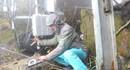 Viettel: Khai trương, sẽ có 36.000 trạm phát sóng 4G