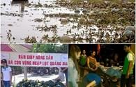 Người Hà Nội đội mưa đi mua dưa hấu ủng hộ nông dân Quảng Nam