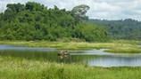 Trải nghiệm đủ vị ở Vườn quốc gia Nam Cát Tiên