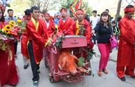 """Lễ hội làng Ném Thượng, Bắc Ninh: Hai """"ông ỉn"""" được rước quanh làng trước lễ chém lợn"""