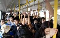 Hà Nội sẽ có xe buýt dành riêng cho phụ nữ: Nhiều ý kiến trái chiều