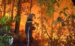 Cháy lớn ở rừng phòng hộ tại Hà Nội: Có thể do thời tiết