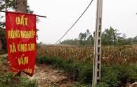 Ngày mai 7.7, Hà Nội công bố dự thảo kết luận thanh tra đất tại xã Đồng Tâm
