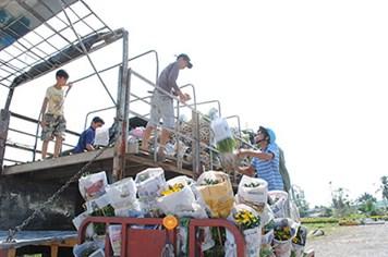 Sa Đéc (Đồng Tháp): Tiêu thụ trên 14 triệu giỏ hoa - kiểng dịp tết