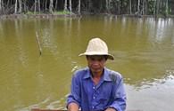 Kiên Giang: Nuôi hải sản gắn với bảo vệ rừng phòng hộ