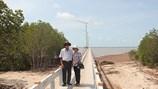 Đồng bằng sông Cửu Long: Bờ biển đang chờ điện gió