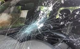 Điều tra vụ thanh niên ném đá chặn xe kiểm lâm truy đuổi