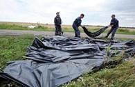 Đã tìm thấy thi thể 196 nạn nhân MH17