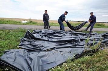 Vụ máy bay MH17 gặp nạn: Các nhà lãnh đạo trên thế giới gây sức ép với ông Putin