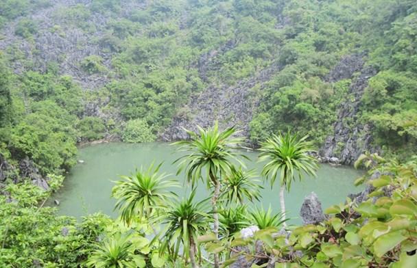 Vườn quốc gia Bái Tử Long. Ảnh: QTV