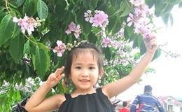 Đẹp mê hồn màu hoa tím bằng lăng trên phố núi Phố Châu