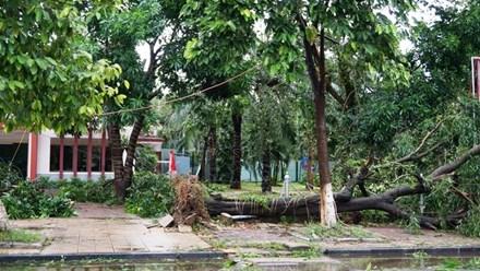 Nghệ An: Bão lớn làm tàu chìm, 13 người mất tích - ảnh 1