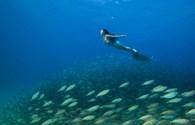 Khám phá lớp học đặc biệt dạy làm nàng tiên cá ở Trung Quốc