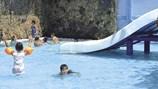 """Cẩn thận tránh """"rước bệnh"""" từ hồ bơi công cộng ngày hè"""
