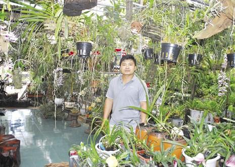 Hành trình đưa lan về rừng của chàng trai tìm ra loài lan mới cho thế giới