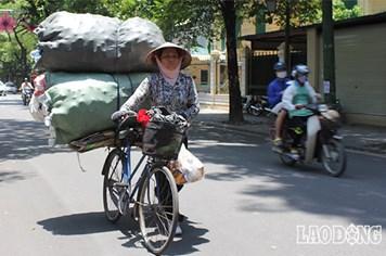 Hà Nội: Những bóng râm hiếm hoi quý giá giữa nắng thiêu đốt đầu hè