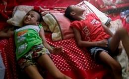 LD1767: Nước mắt của người mẹ có 2 con đều bị bại não