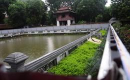 Giám đốc Văn Miếu nói gì về sự xuống cấp nghiêm trọng của giếng Thiên Quang?