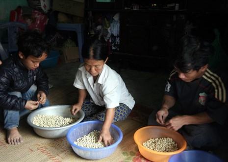 LD1802: Hoàn cảnh khốn khó của gia đình người lùn tại Hưng Yên