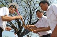 Cựu binh Trường Sa mặc áo cho liệt sĩ Gạc Ma