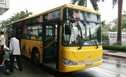 TPHCM cho phép quảng cáo trên hơn 2.000 xe buýt