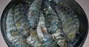 Cá Thòi Lòi món ngon đảo Lý Sơn