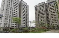 Đại gia làm nhà giá rẻ: Cơ hội mua nhà cho người  thu nhập thấp!