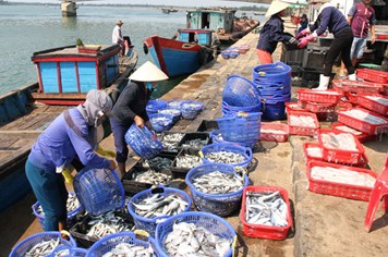 Thị trường hải sản tấp nập trở lại