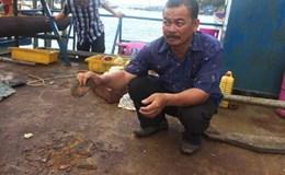 Vụ 18 tàu vỏ thép đóng mới hư hỏng: Hôm nay thông báo kết quả thẩm định chất lượng