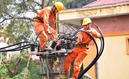 Chính phủ chỉ đạo chưa xem xét tăng giá điện