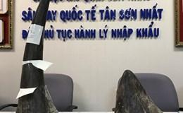 Hải quan Tân Sơn Nhất bắt lô sừng tê giác trị giá 8 tỉ đồng