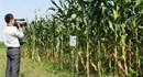 Khoa học và Công nghệ: Ứng dụng công nghệ mới nâng cao chuỗi giá trị nông nghiệp