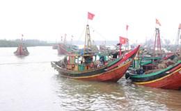 Có nghiệp đoàn, ngư dân an tâm bám biển