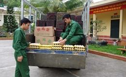 Bắt quả tang xe chở 24 nghìn quả trứng gia cầm nhập lậu vào Việt Nam