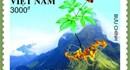 Bộ tem đặc biệt về sâm Ngọc Linh