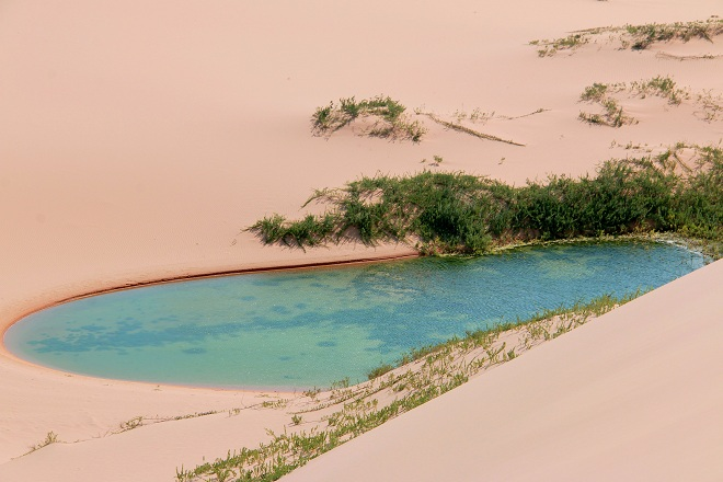 Sơn Hải - nơi đồi cát hùng vĩ chạy ra sát biển đẹp mê hồn - Ảnh minh hoạ 10