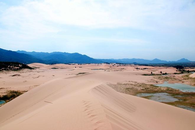 Sơn Hải - nơi đồi cát hùng vĩ chạy ra sát biển đẹp mê hồn - Ảnh minh hoạ 11