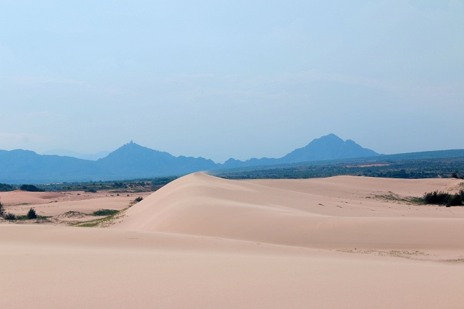 Sơn Hải - nơi đồi cát hùng vĩ chạy ra sát biển đẹp mê hồn - Ảnh minh hoạ 15