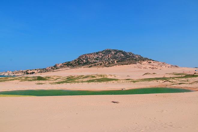 Sơn Hải - nơi đồi cát hùng vĩ chạy ra sát biển đẹp mê hồn - Ảnh minh hoạ 2