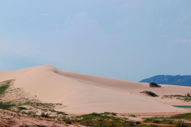 Sơn Hải - nơi đồi cát hùng vĩ chạy ra sát biển đẹp mê hồn - Ảnh minh hoạ 4