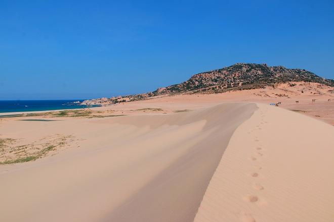 Sơn Hải - nơi đồi cát hùng vĩ chạy ra sát biển đẹp mê hồn - Ảnh minh hoạ 5