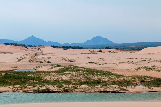 Sơn Hải - nơi đồi cát hùng vĩ chạy ra sát biển đẹp mê hồn - Ảnh minh hoạ 7