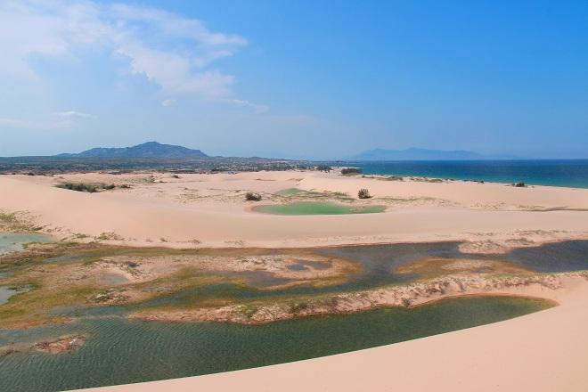 Sơn Hải - nơi đồi cát hùng vĩ chạy ra sát biển đẹp mê hồn - Ảnh minh hoạ 8