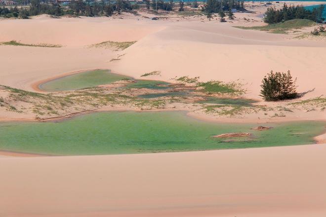 Sơn Hải - nơi đồi cát hùng vĩ chạy ra sát biển đẹp mê hồn - Ảnh minh hoạ 9