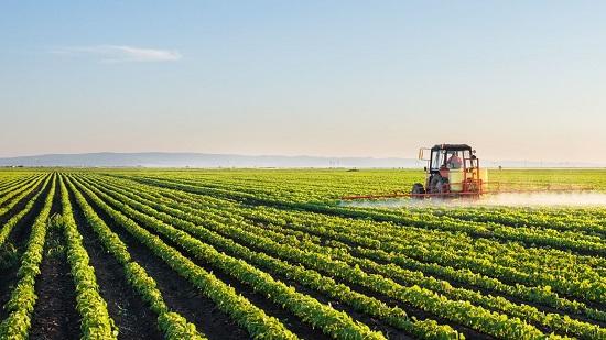 kết quả hình ảnh cho xuất khẩu lao động nhật bản ngành nông nghiệp