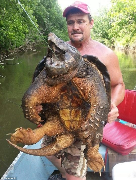 Một người đàn ông tên Dava Harrell (Mỹ) vừa câu được một sinh vật khổng lồ có hình thù kỳ dị, khi có phần đầu, đuôi, chân giống cá sấu, nhưng lại có mai rùa.