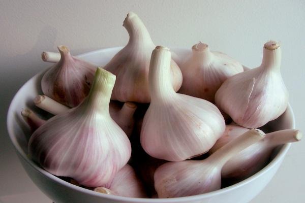 26 teew - Những lợi ích hay ho từ việc ăn tỏi thường xuyên