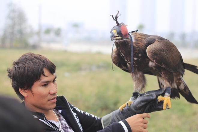 Chim Đại bàng Vàng Mông Cổ. Loại chim này có cân nặng tầm khoảng 3-5kg. Sải cánh dài tới hơn 1m. Những chú chim này có giá khoảng hơn 200 triệu đồng.